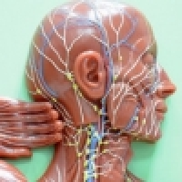 Mechanical lymphatic drainage